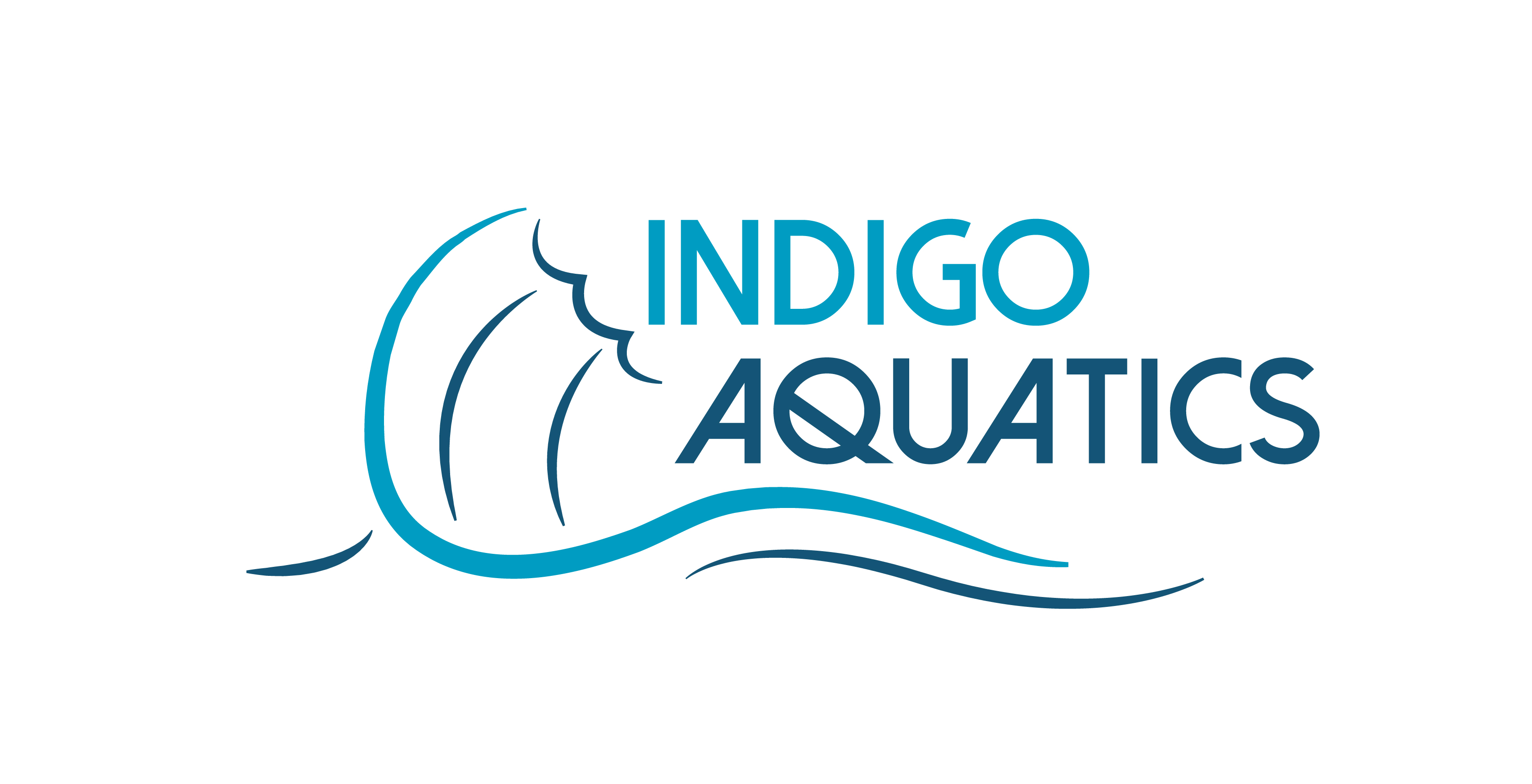 Indigo Aquatics JPG